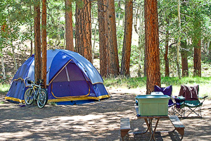 Tent Camping at Witch Meadow Family Campground